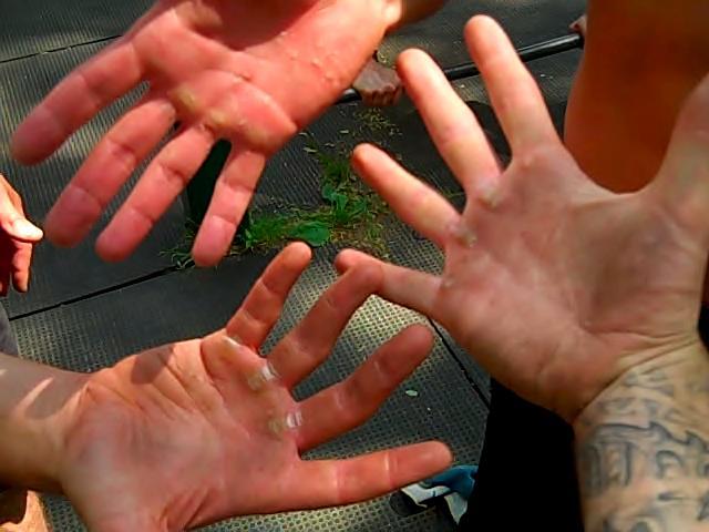 Case Design glove phone case : Why I Donu0026#39;t Wear Workout Gloves : Al Kavadlo